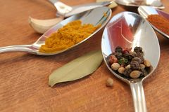 Cooking spices. Food seasoning. Spices in a teaspoons. Stock Photo