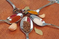 Cooking spices. Food seasoning. Spices in a teaspoons. Royalty Free Stock Image