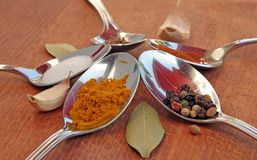 Cooking spices. Food seasoning. Spices in a teaspoons. Royalty Free Stock Photo