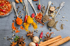 Cooking spices powders and seed, chili flakes, nutmeg and cinnam Stock Image