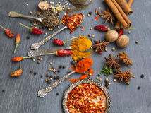 Cooking spices powders and seed, chili flakes, nutmeg and cinnam Royalty Free Stock Photography