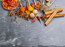 Cooking spices powders and seed, chili flakes, nutmeg and cinnam Royalty Free Stock Image