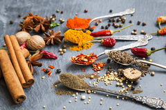 Cooking spices powders and seed, chili flakes, nutmeg and cinnam Royalty Free Stock Images