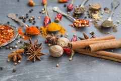 Cooking spices powders and seed, chili flakes, nutmeg and cinnam Stock Photos