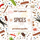 Cooking spices seamless pattern set. Cooking spices seamless pattern  banner set. Popular culinary herbs. Design for cosmetics, store, market, natural health Stock Image