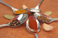 Cooking spices. Food seasoning. Spices in a teaspoons. Royalty Free Stock Images