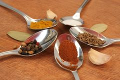 Cooking spices. Food seasoning. Spices in a teaspoons. Royalty Free Stock Photos