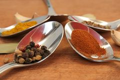 Cooking spices. Food seasoning. Spices in a teaspoons. Stock Image