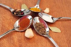 Cooking spices. Food seasoning. Spices in a teaspoons. Stock Photography