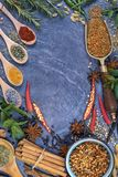 Spices - Space for Text Stock Images