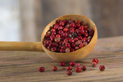 Cooking Spoon with red Peppercorns Stock Photography