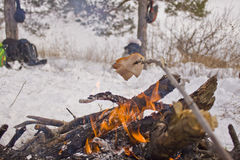 Cooking at the stake. Cooking on a fire in the forest Stock Photography