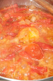 Cooking stew of tomatoes Royalty Free Stock Photo