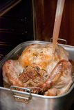 Cooking a Thanksgiving Turkey Royalty Free Stock Photo