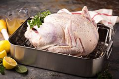 Cooking Thanksgiving turkey. Cooking Thanksgiving or Christmas turkey in a roasting pan with lemons and herbs royalty free stock photo