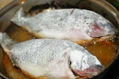 Cooking Tilapia Fish. Cooking fish fried in a pan Royalty Free Stock Photography