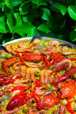 Cooking Traditional Paella Royalty Free Stock Photo