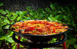 Cooking Traditional Paella Royalty Free Stock Photography