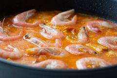 Cooking of traditional spanish seafood paella. Preparation step of traditional spanish seafood paella Royalty Free Stock Photos