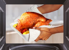 Cooking turkey Royalty Free Stock Image