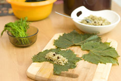 Cooking Turkish food stuffed grape leaves Royalty Free Stock Photos