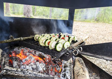 Cooking vegan food in the wild forest Stock Photography