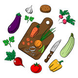 Cooking a vegetable salad, colorful sketch Stock Photography