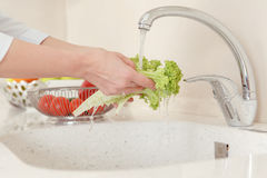 Cooking vegetables in the home kitchen Royalty Free Stock Photo
