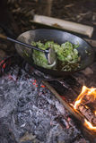 Cooking vegetables and meat in wok pan at camp Stock Images