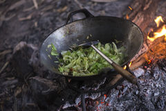 Cooking vegetables and meat in wok pan at camp Stock Photography