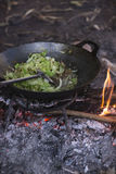 Cooking vegetables and meat in wok pan at camp Stock Image