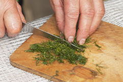 Cooking: woman hands cutting dill Royalty Free Stock Photo