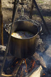 Cooking at the wood over campfire. Casserole with rice and meat. Cooking at the wood over campfire Royalty Free Stock Photo