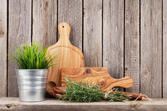 Cooking wood utensils and herbs. On shelf in front of wooden wall with copy space royalty free stock images