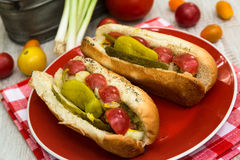 Cookout do verão dos cachorros quentes do estilo de Chicago Foto de Stock Royalty Free