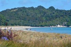 Cooks Beach - New Zealand Stock Photo