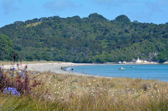 Cooks Beach - New Zealand Stock Photo