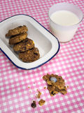 Cooky with milk and dish of cookies on check table cloth Stock Photography