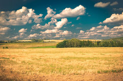 Cool agriculture Stock Photos