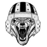 Cool animal wearing rugby helmet Extreme sport Wolf Dog Wild animal Hand drawn illustration for tattoo, emblem, badge vector illustration