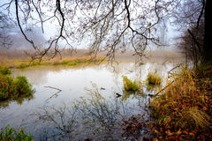 The cool autumn morning at the pond Stock Photos