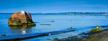Cool Baltic sea Stock Photography