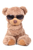 Cool Bear Stock Images