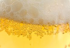 Cool beer. Background image closeup Stock Image