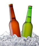 Cool beer bottle Royalty Free Stock Photo