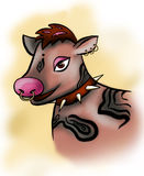 Cool  brown Cow with piercings. Cool brown Cow with piercings Royalty Free Stock Photos