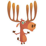 Cool cartoon moose character. Vector moose illustration stock images
