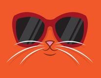 Cool Cat Sunglasses. Cartoon cat head with sunglasses Stock Images