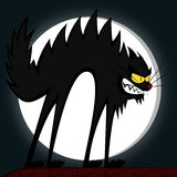 Cool cats. An angry black tomcat's fury in front of a full moon Royalty Free Stock Photo