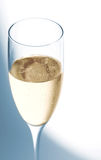 Cool champagne Stock Image
